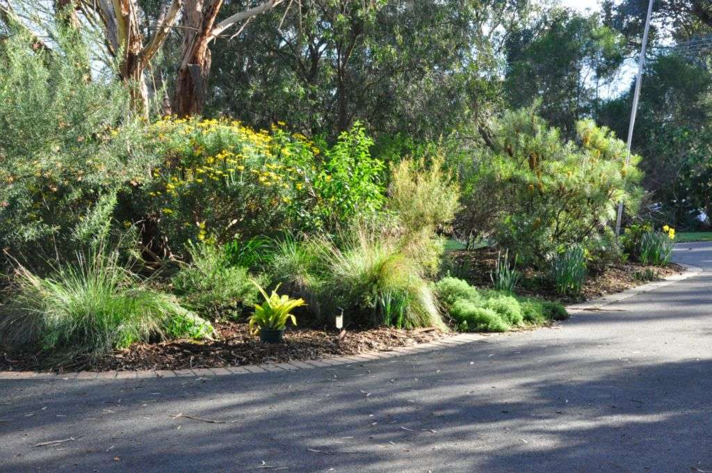 A Stunning Native Garden Frames The Entrance To Georgeu0027s Property.
